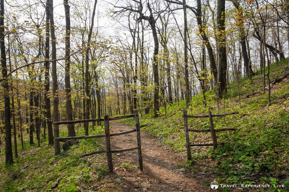 Wooden fence on the Spy Rock Trail