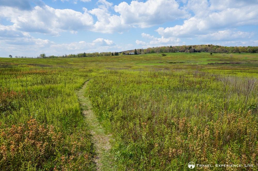Walking path in Big Meadows, Shenandoah National Park