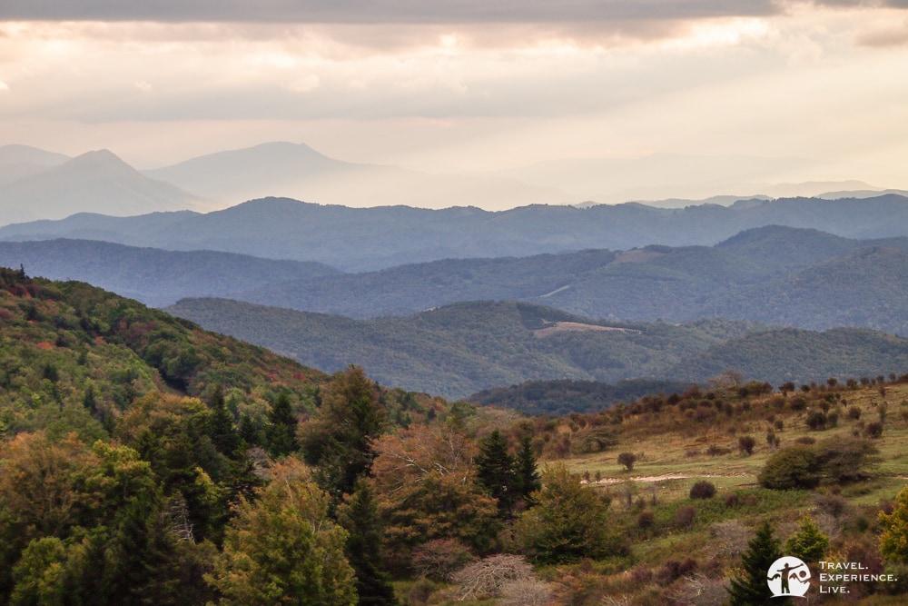 Evening light in Grayson Highlands, Virginia
