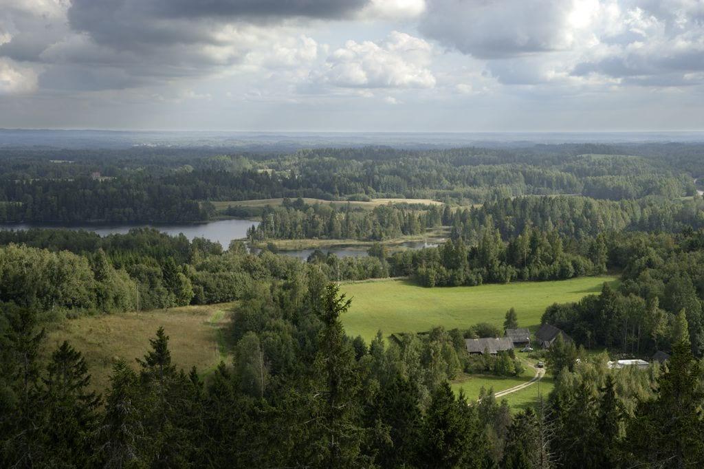 Southern Estonia landscape