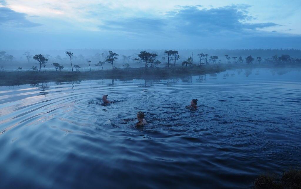 Swimming in a bog, Estonia