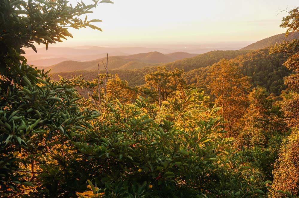 Golden sunrise in Shenandoah National Park