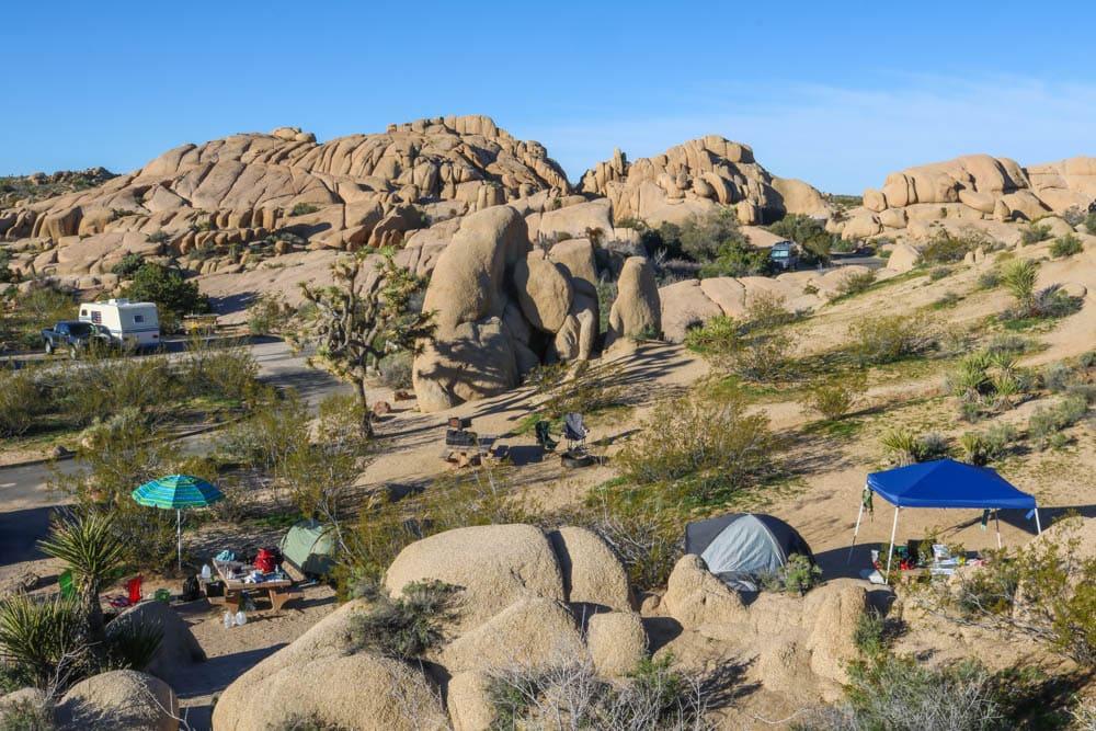 Jumbo Rocks Campground morning