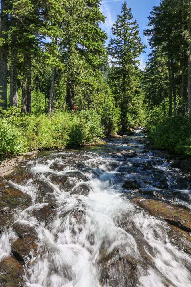 River in Mount Rainier National Park