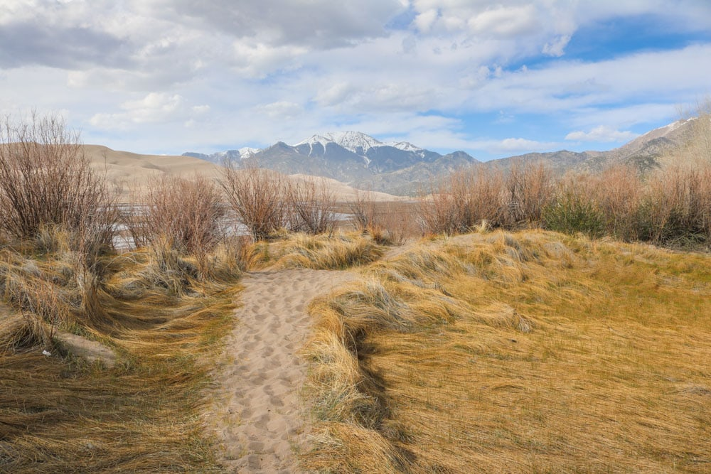 Trail in Great Sand Dunes National Park, Colorado