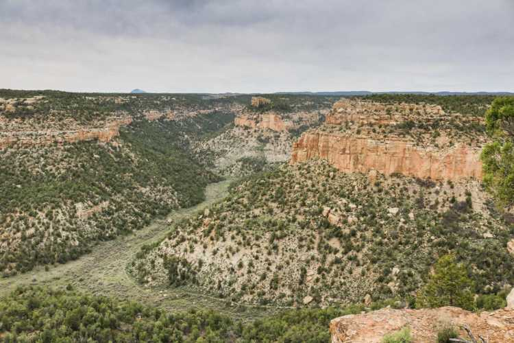 Spruce Canyon Trail, Mesa Verde National Park