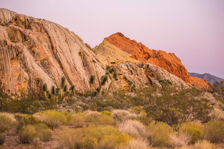 Gold Butte National Monument - Ten Adventures in National Monuments