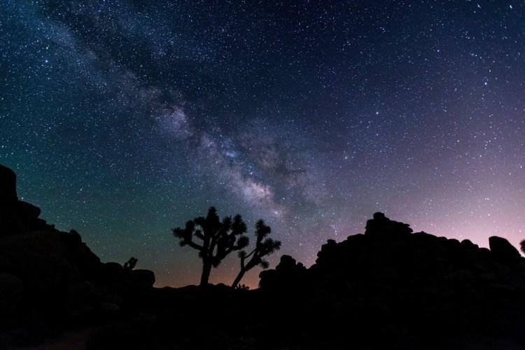 Night Sky in Joshua Tree National Park, California - Things to Do in Joshua Tree National Park