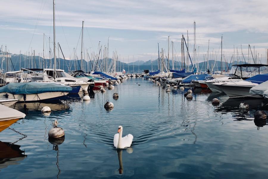 suisse-lac-leman2
