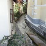 travel-slovenia-stream-jezernica-view