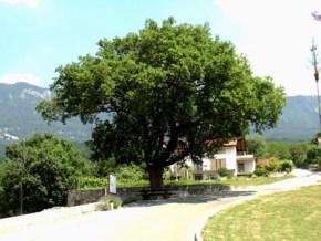 Entry point in village Kamnje