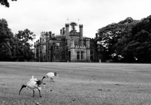 Government House, the official residence of the NSW governor