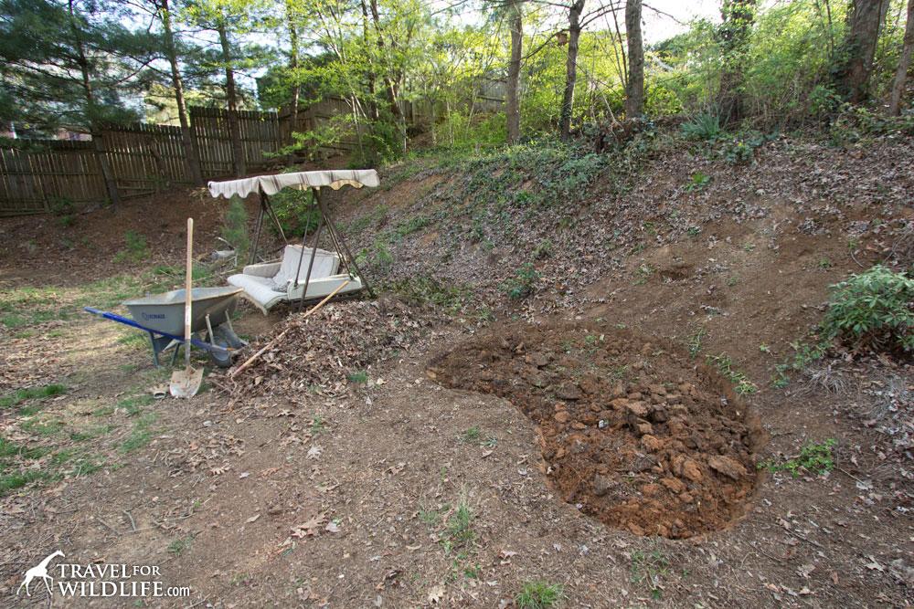 Building Pond Hillside