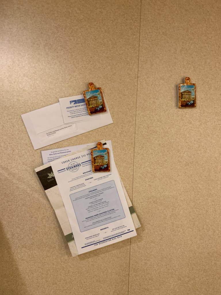Fridge Magnets - Take These On your Cruise!