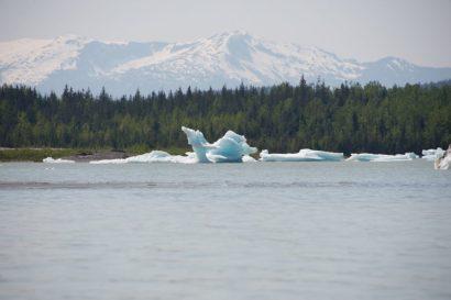 Iceberg by Mendenhall lake