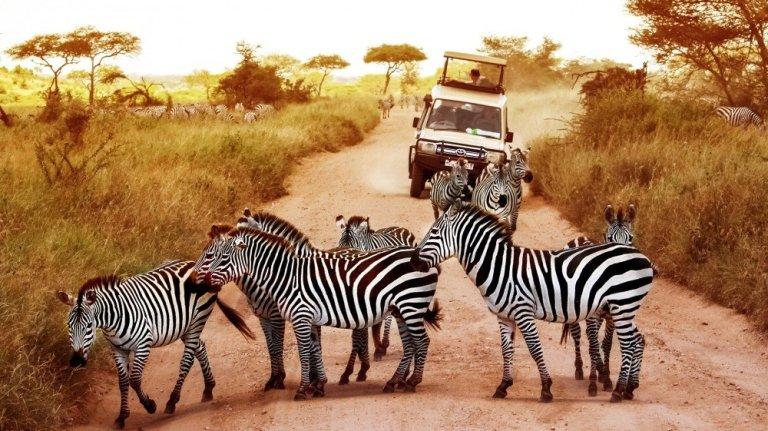 Tanzania Northern Circuit