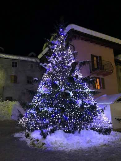 Visit Alpine village Christmas Trees in Italy