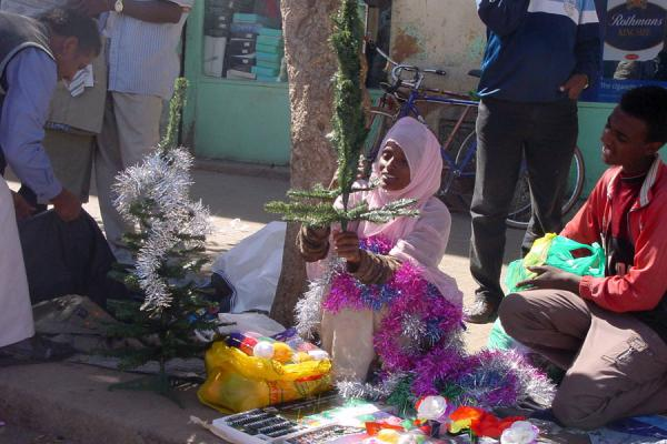 Selling Christmas Trees On The Streets Eritrean Markets