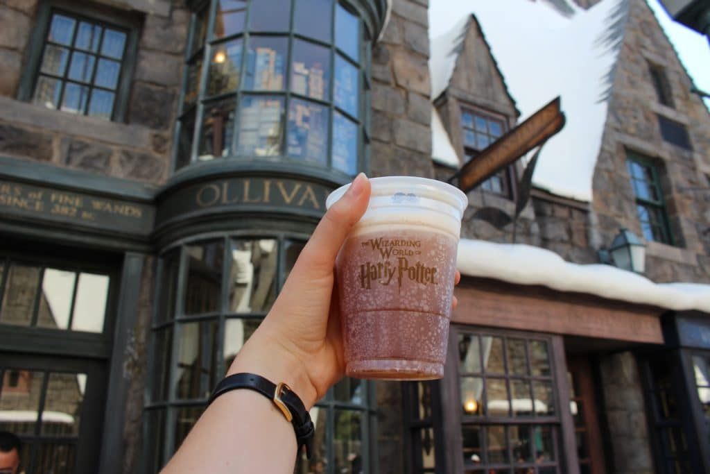 Wizarding World of Harry Potter / Our Bucket List