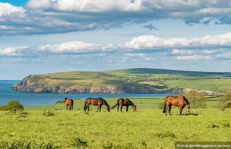 Costa de Pembrokeshire