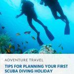 Dicas para planejar suas primeiras férias de mergulho