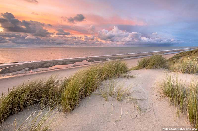 Dunas e costa - Schiermonnikoog