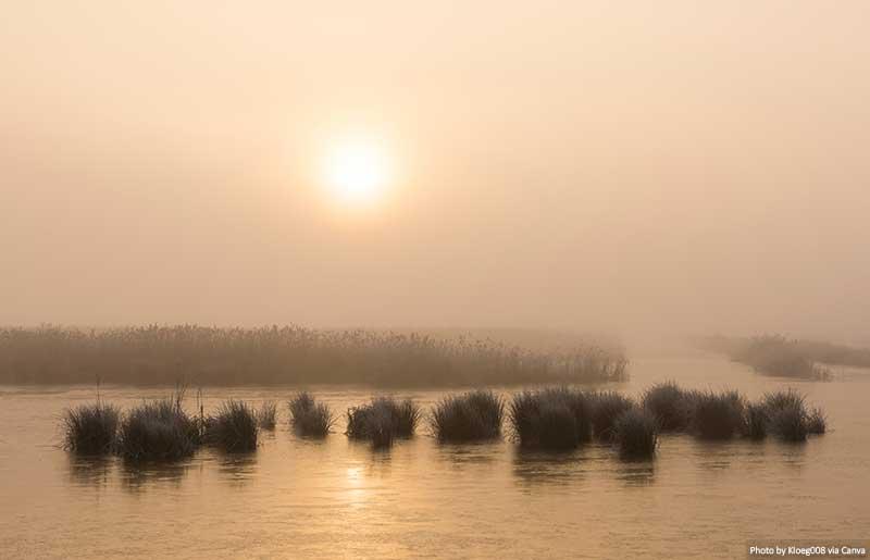 Manhã de inverno em Weerribben e Wieden