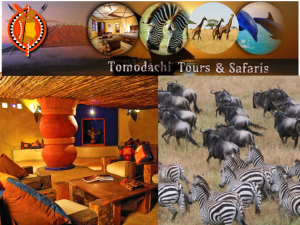 Tomodachi Tours and Safaris