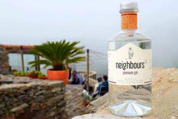 gin Neighbours 11