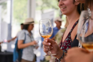 Vinhos a descobrir Wine Market