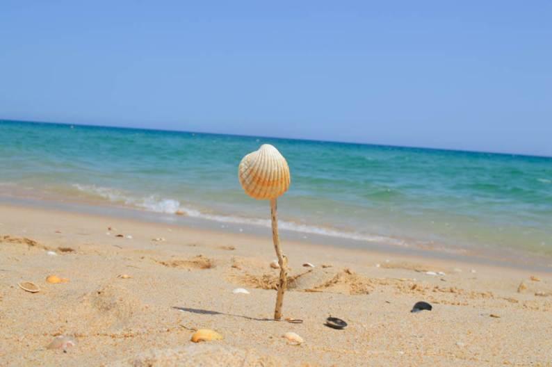 De 10 mooiste stranden in de Algarve