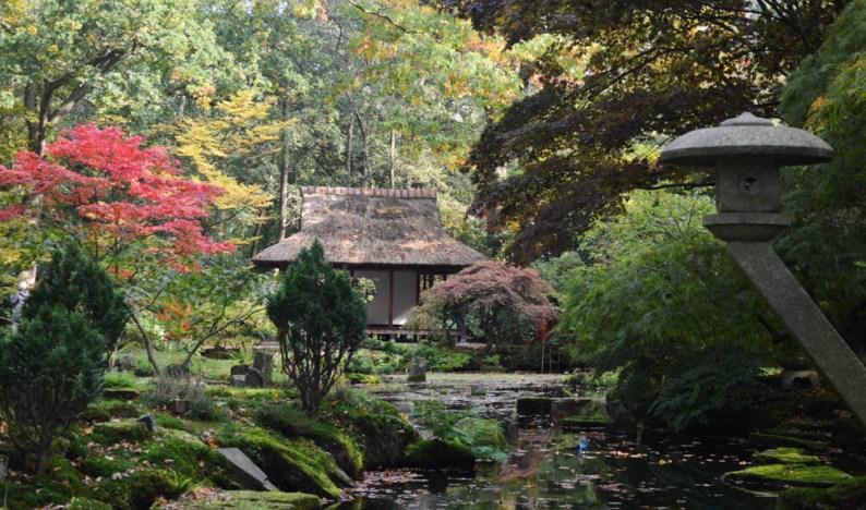 Japanse Tuin - Den Haag