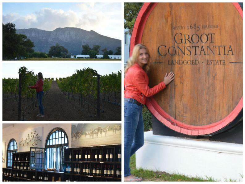 Wijn proeven bij wijngaard Groot Constantia