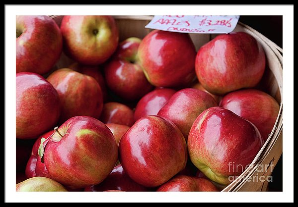 Basket of red apples at the market in Ottawa, Canada - Framed print by Tatiana Travelways