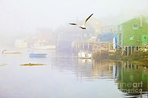 Fog over West Dover Nova Scotia