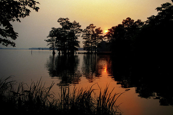 Sunrise on Reelfoot Lake