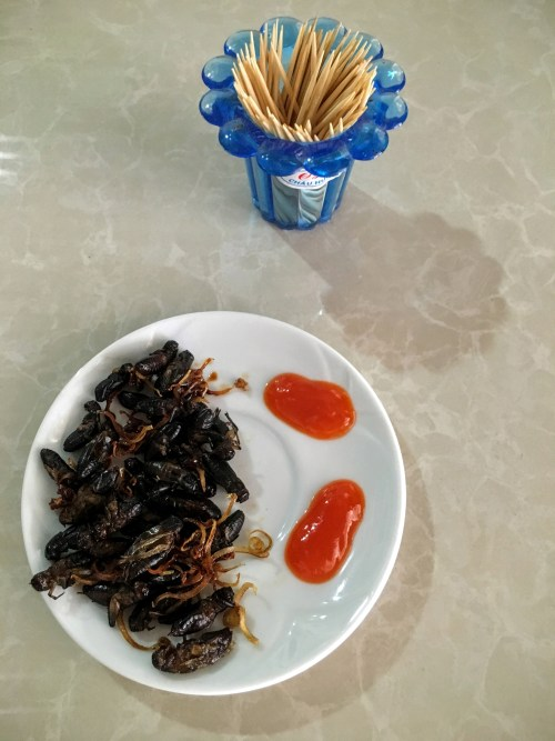 Fried Crickets in Da Lat