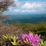 Blue Ridge Parkway Attractions