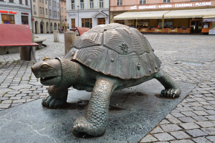 Olomouc, Czech Republic, Turtle