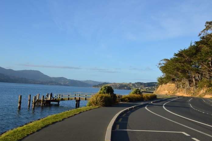 Portobello Road, Otago Peninsula, New Zealand