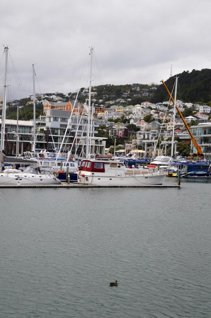 Lambton Harbour, Wellington, New Zealand