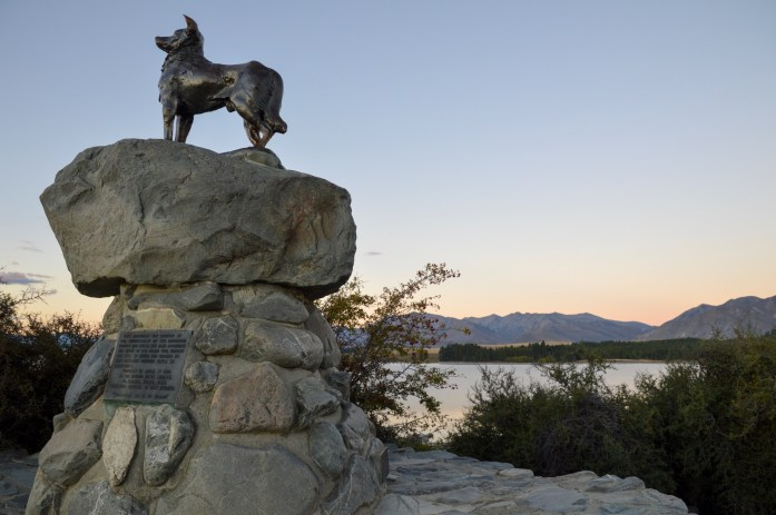 Mackenzie Sheepdog Statue, Lake Tekapo, New Zealand