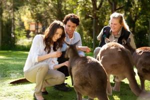 Healeville Sanctuary - Yarra Valley