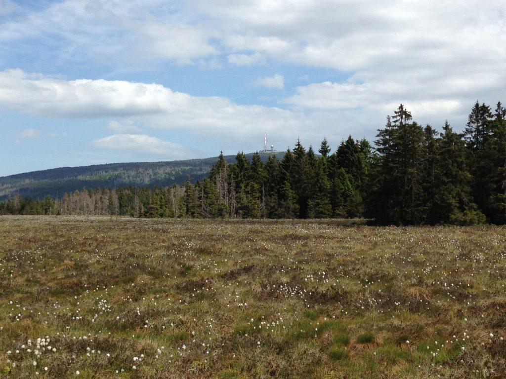 Top 10 Sehenswürdigkeiten Harz.Nationalpark Harz.