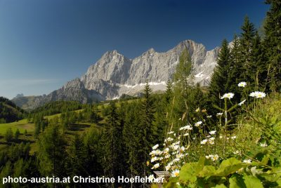 Frühjahrsaufnahme am Dachsteinweg