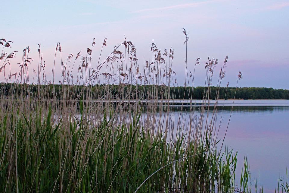 Fleesensee Mecklenburg Vorpommern Seenplatte