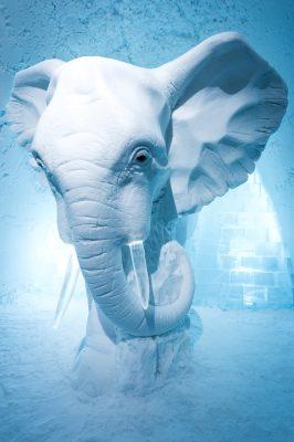 Icehotel Iglu Elefant