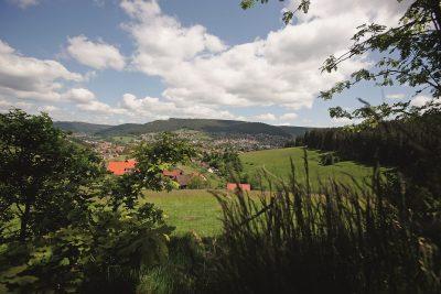 Landschaftsbild_Baiersbronn.tif