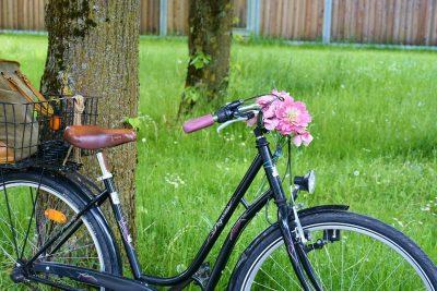Fahrrad und Wiese