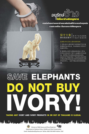 SAVE-ELEPHANTS-DO-BUY-NOT-IVORY_2-300x450